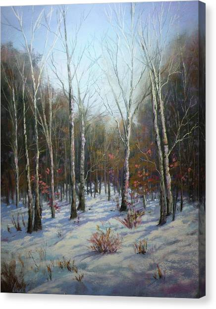 Winterscape Canvas Print by Paula Ann Ford