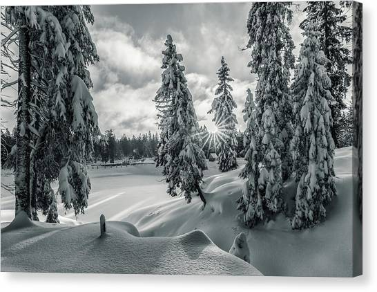 Winter Wonderland Harz In Monochrome Canvas Print