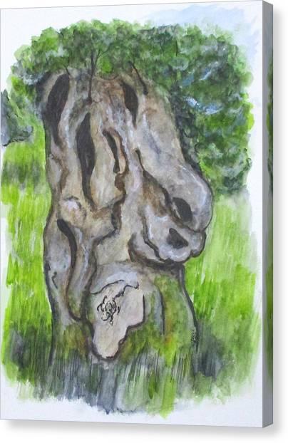 Wisdom Olive Tree Canvas Print
