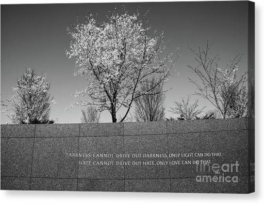 Canvas Print featuring the photograph Wise Words by Craig Leaper