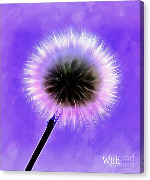 Summer Canvas Print - Wishes Come True by Krissy Katsimbras