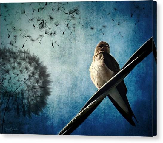 Wishing Swallow Canvas Print