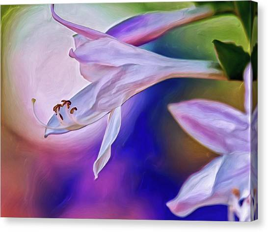 Canvas Print featuring the digital art With A Little Love by Doctor Mehta