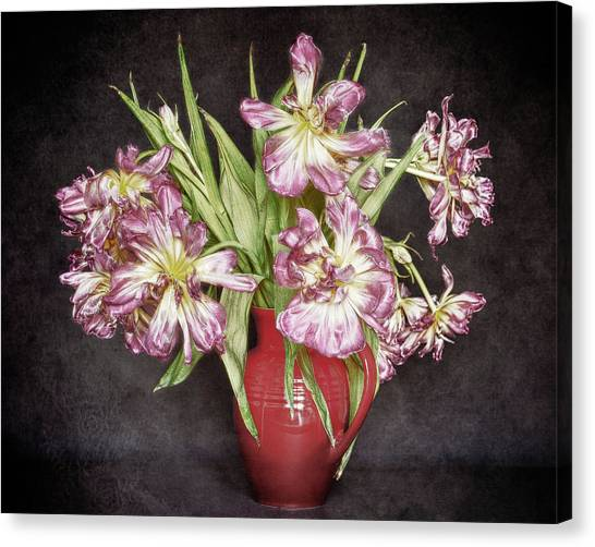 Withered Tulips Canvas Print