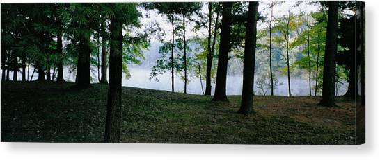 Within Sight Of A Lake Canvas Print by Tom Hefko