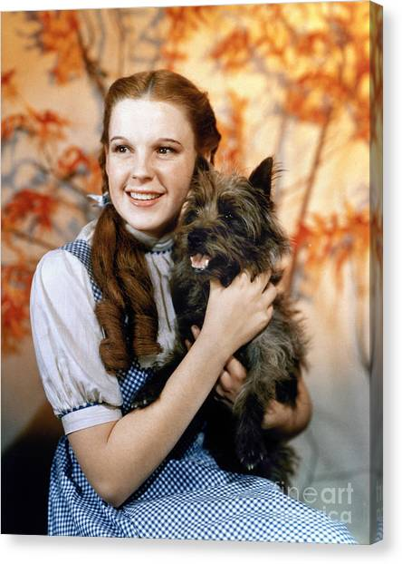 Girl Canvas Print - Wizard Of Oz, 1939 by Granger
