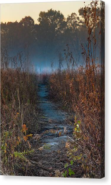 Prairie Sunrises Canvas Print - Wolf Road Prairie Trail by Steve Gadomski