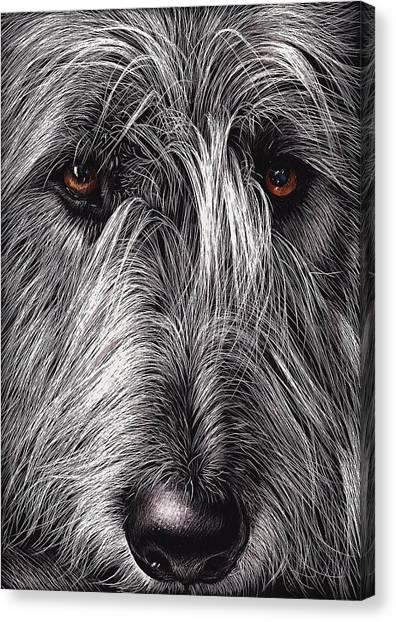 Wolfhound Canvas Print