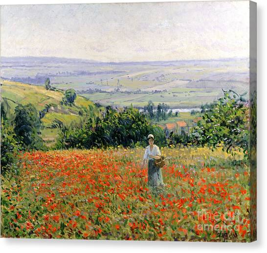 In Bloom Canvas Print - Woman In A Poppy Field by Leon Giran Max