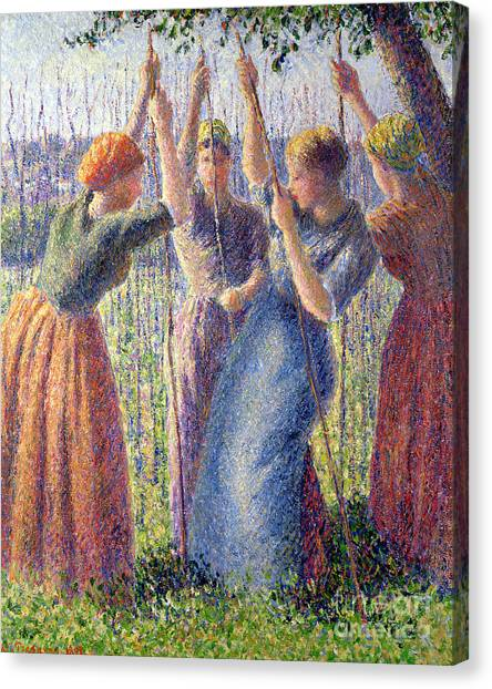 Camille Canvas Print - Women Planting Peasticks by Camille Pissarro