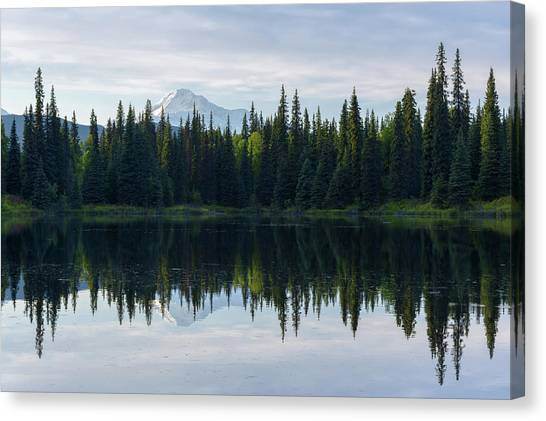 Denali Canvas Print - Wonder by Chad Dutson