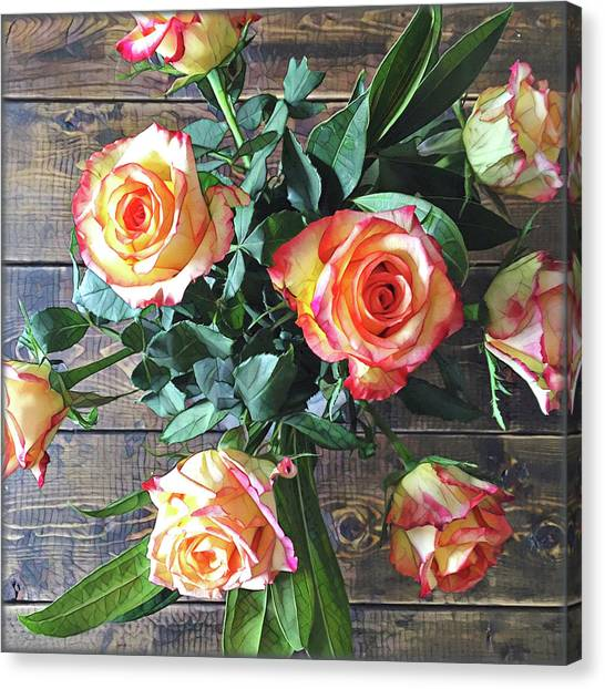 Close-up Canvas Print - Wood And Roses by Shadia Derbyshire