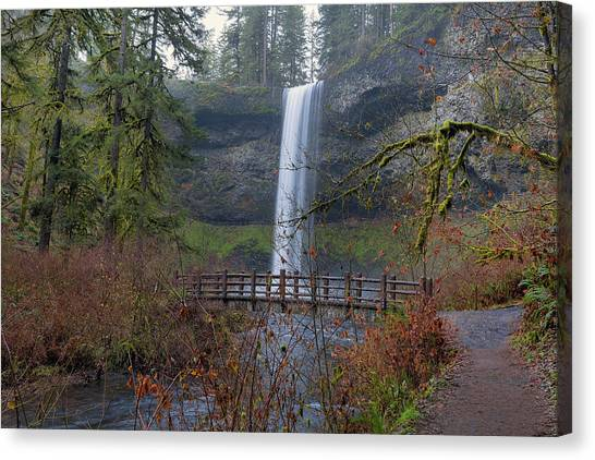 Canvas Print - Wood Bridge On Hiking Trail At Silver Falls State Park by David Gn