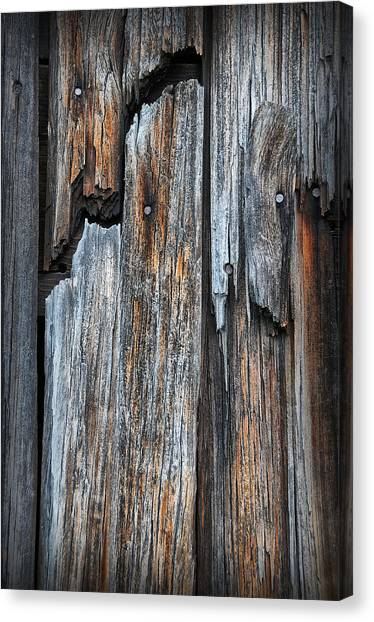 Wood Deatail Canvas Print