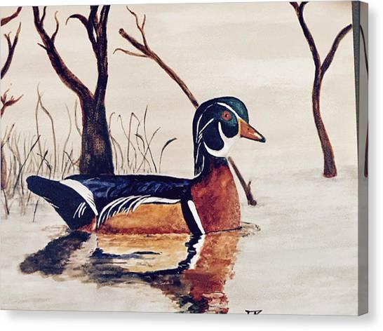 Wood Duck No. 2 Canvas Print