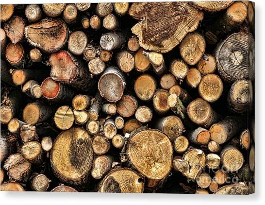 Deforestation Canvas Print - Wood Log Stack Number 144 by Olivier Le Queinec