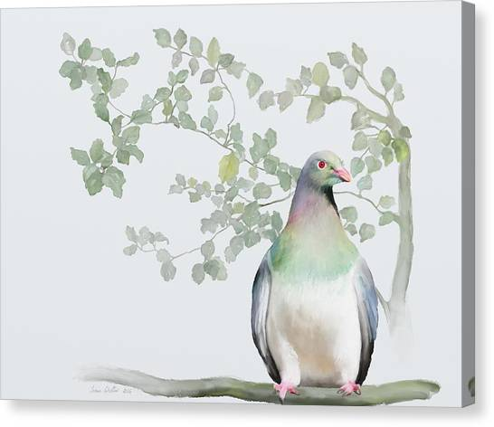 Canvas Print featuring the painting Wood Pigeon by Ivana Westin