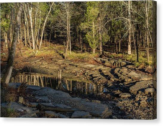 Wooded Backwash Canvas Print