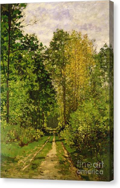 Painters Canvas Print - Wooded Path by Claude Monet
