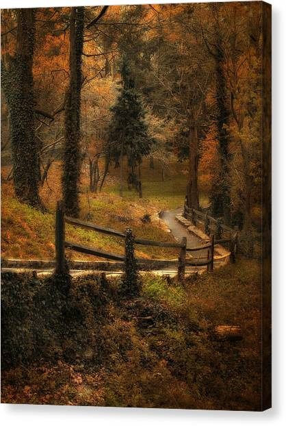 Forest Paths Canvas Print - Wooded Path by Jessica Jenney