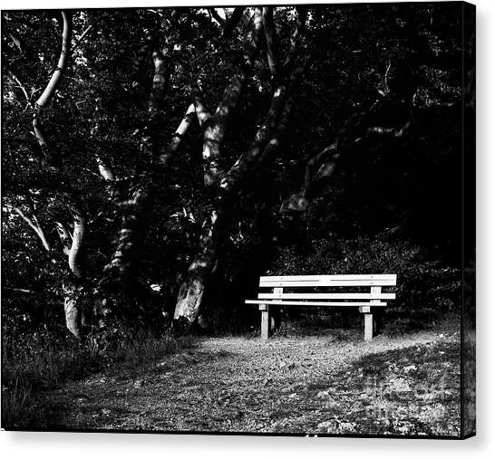 Wooden Bench In B/w Canvas Print