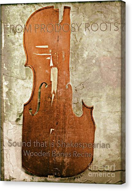Wooden Bones Recite  Canvas Print by Steven Digman
