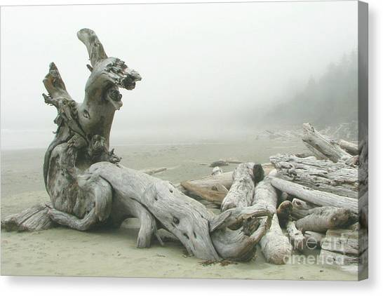 Wooden Dragon Canvas Print