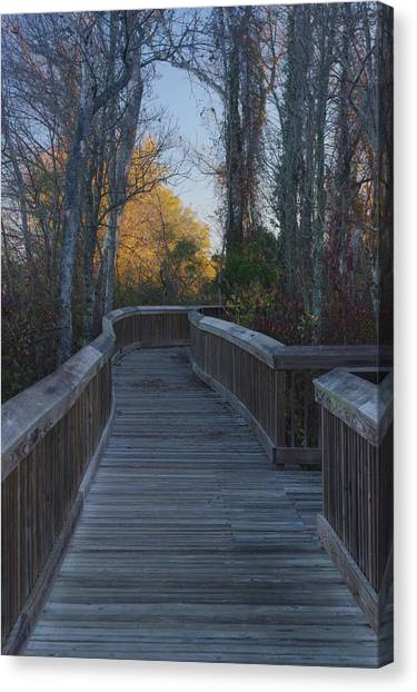 Wooden Path Canvas Print