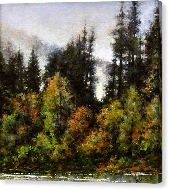 Canvas Print - Woodland Bottoms In April by Jim Gola