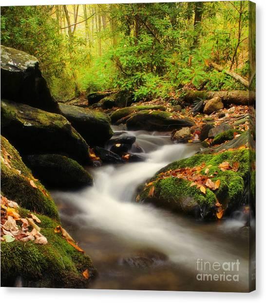 Blue Ridge Parkway Waterfalls Canvas Print - Woodland Fantasies by Darren Fisher