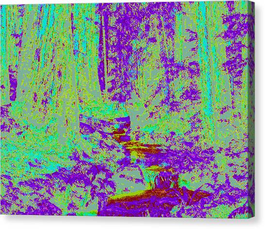 Woodland Forest D4 Canvas Print by Modified Image