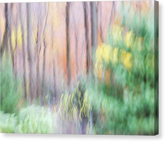 Canvas Print featuring the photograph Woodland Hues 2 by Bernhart Hochleitner