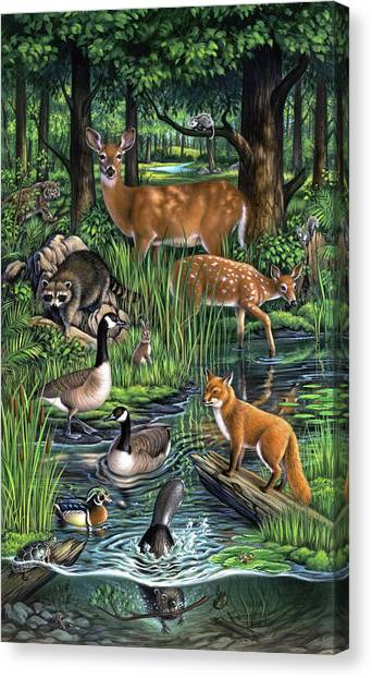 Raccoons Canvas Print - Woodland by Jerry LoFaro