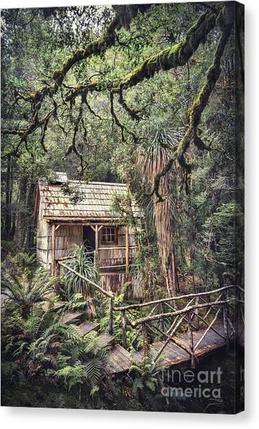 Brunch Canvas Print - Woodland Mysteries by Evelina Kremsdorf
