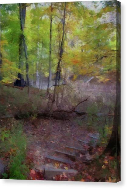 Woodland Steps Canvas Print
