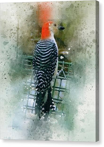 Woodpecker-2-a-8 Canvas Print