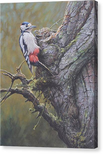 Canvas Print featuring the painting Woodpecker On Tree by Alan M Hunt