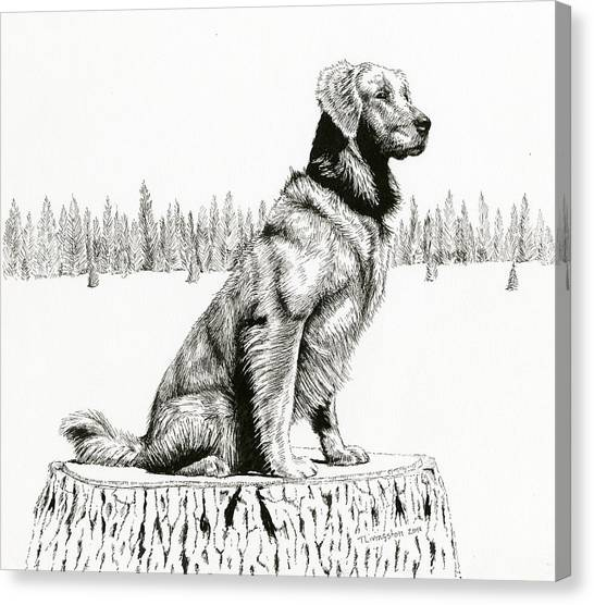 Woods Dog Canvas Print