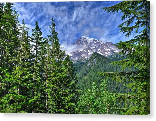 Woods Surrounding Mt. Rainier Canvas Print