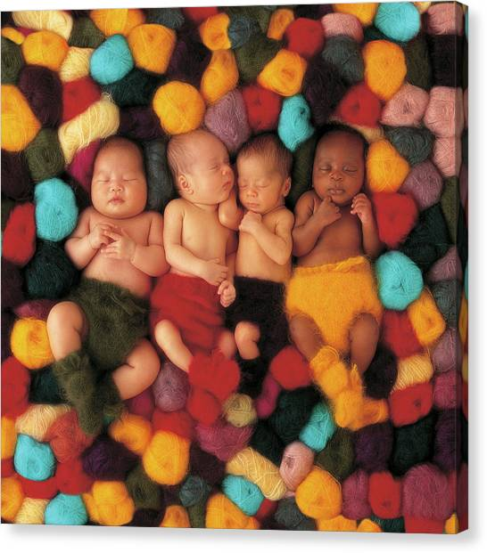 Xmas Canvas Print - Wool Babies by Anne Geddes