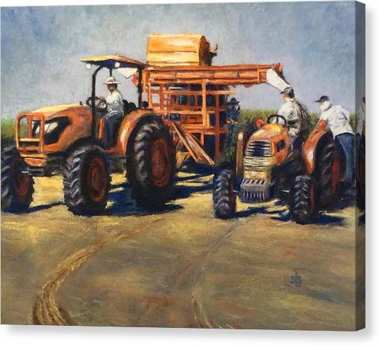 Workin' At The Ranch Canvas Print