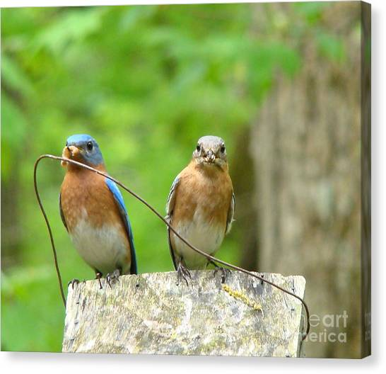 Working Couple Canvas Print