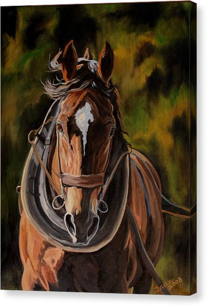 Draft Horses Canvas Print - Working by Jana Goode