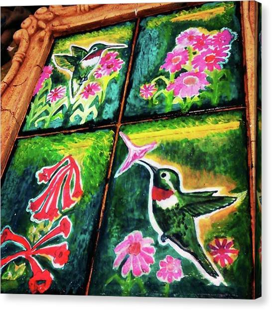 Hummingbirds Canvas Print - Working On Some New Artwork For My by Genevieve Esson