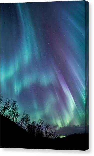 Night Lights Canvas Print - Worth The Wait by Tor-Ivar Naess