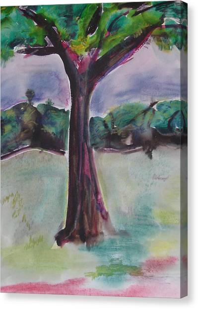 Wounded Tree Canvas Print by Rima Bidkar
