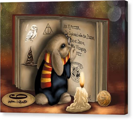 Wow I'm Harry Potter Canvas Print