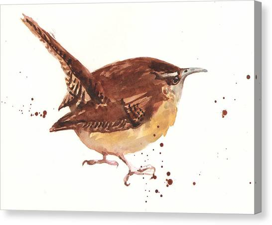 Wrens Canvas Print - Wren - Cheeky Wren by Alison Fennell