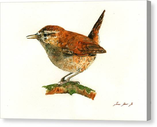 Wrens Canvas Print - Wren Bird Art Painting by Juan  Bosco