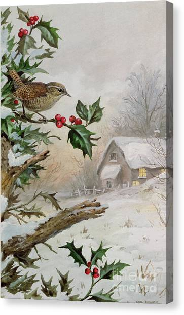 Wrens Canvas Print - Wren In Hollybush By A Cottage by Carl Donner